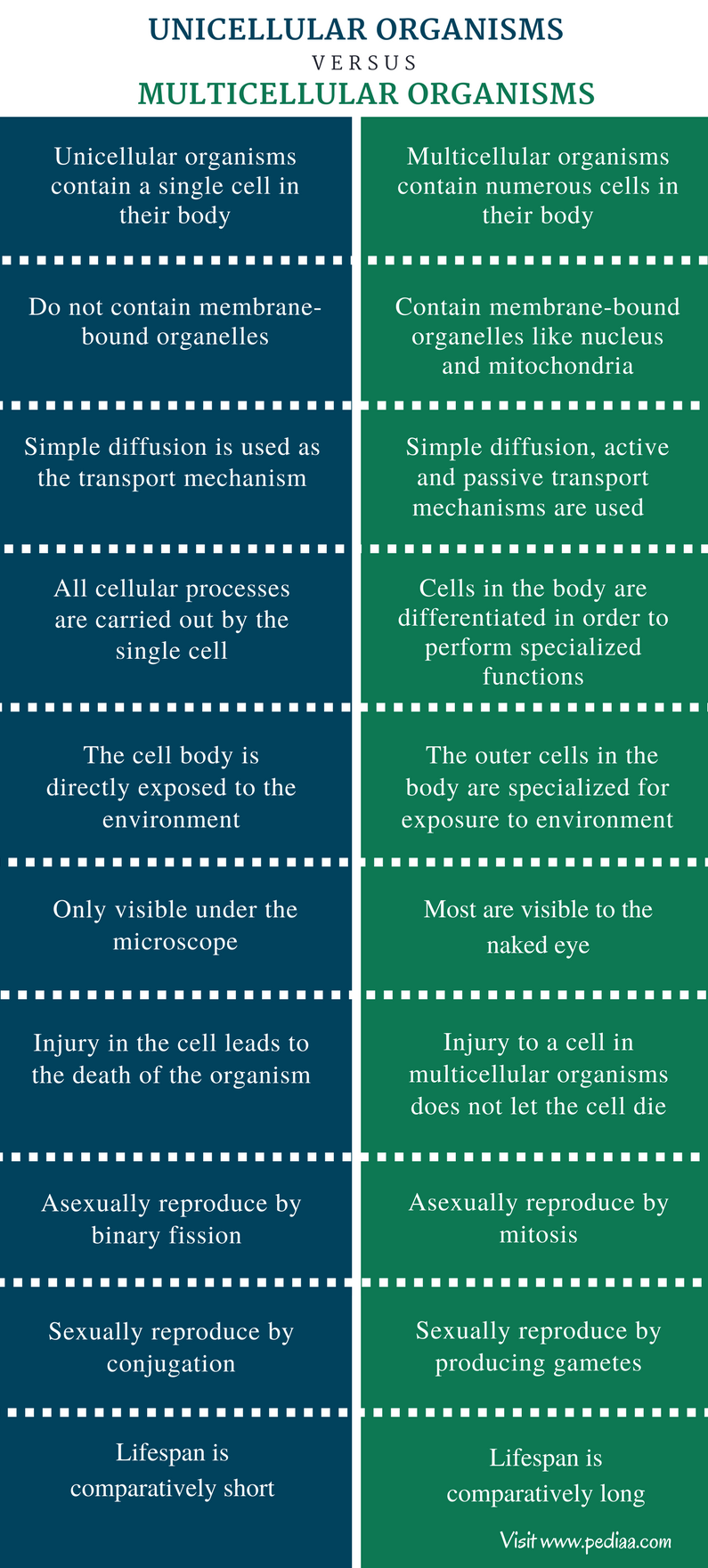 Difference Between Unicellular And Multicellular Organisms