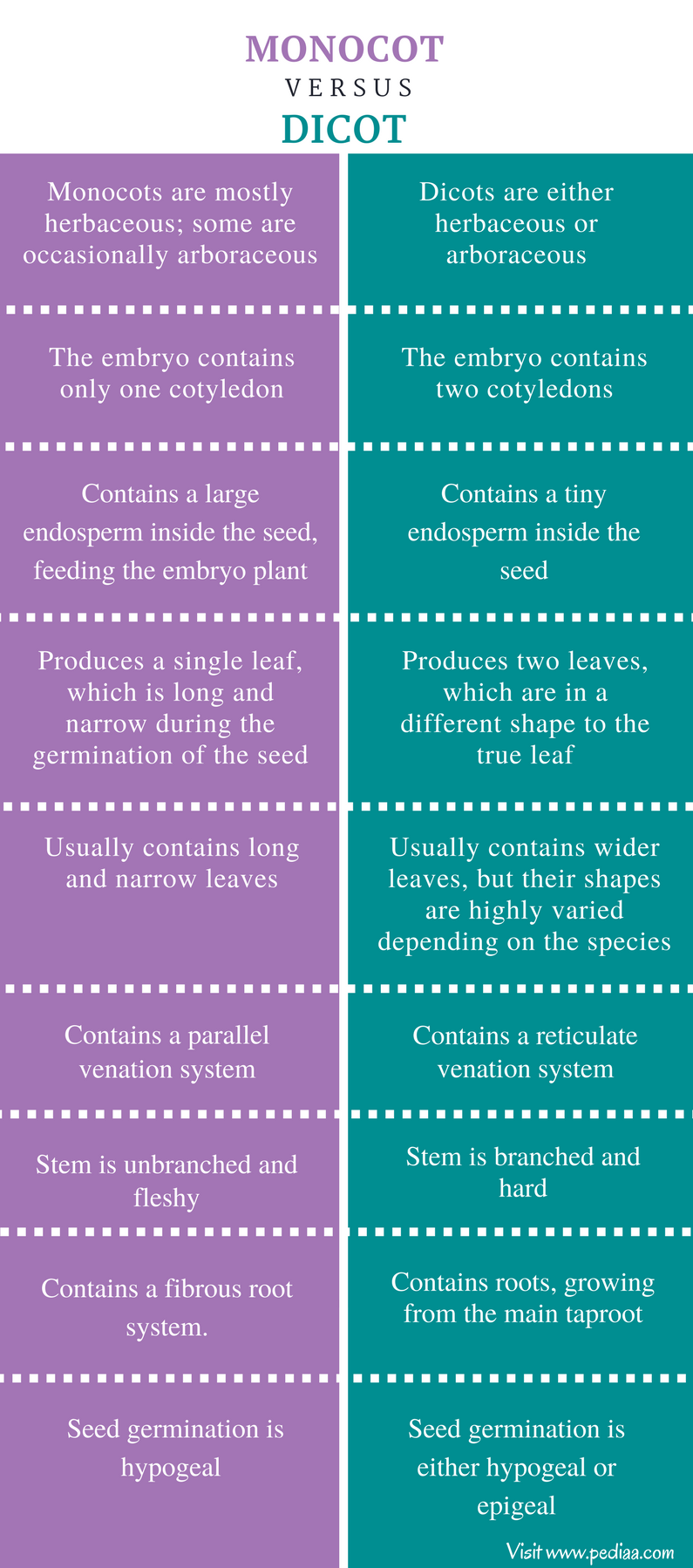 Difference Between Monocot and Dicot - Comparison Summary