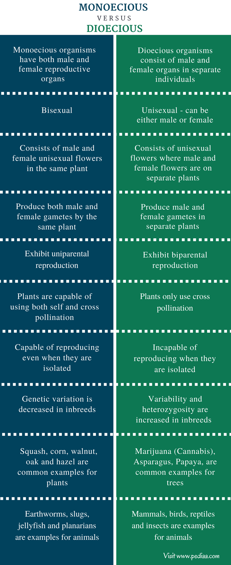 Difference Between Monoecious and Dioecious - Comparison Summary