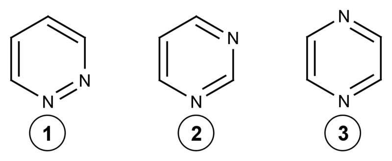 Difference Between Purines and Pyrimidines -3