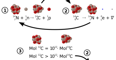 Difference Between Carbon 12 and Carbon 14
