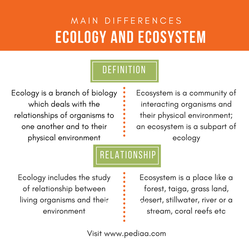 Difference Between Ecology and Ecosystem - Comparison Summary