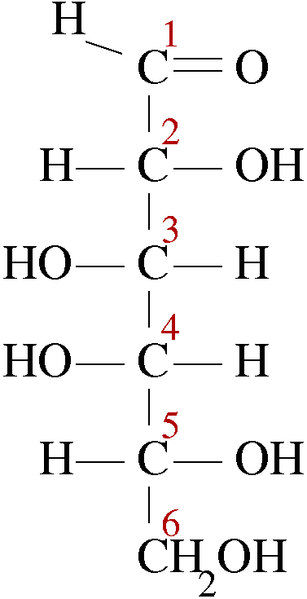Difference Between L and D Isomers -1