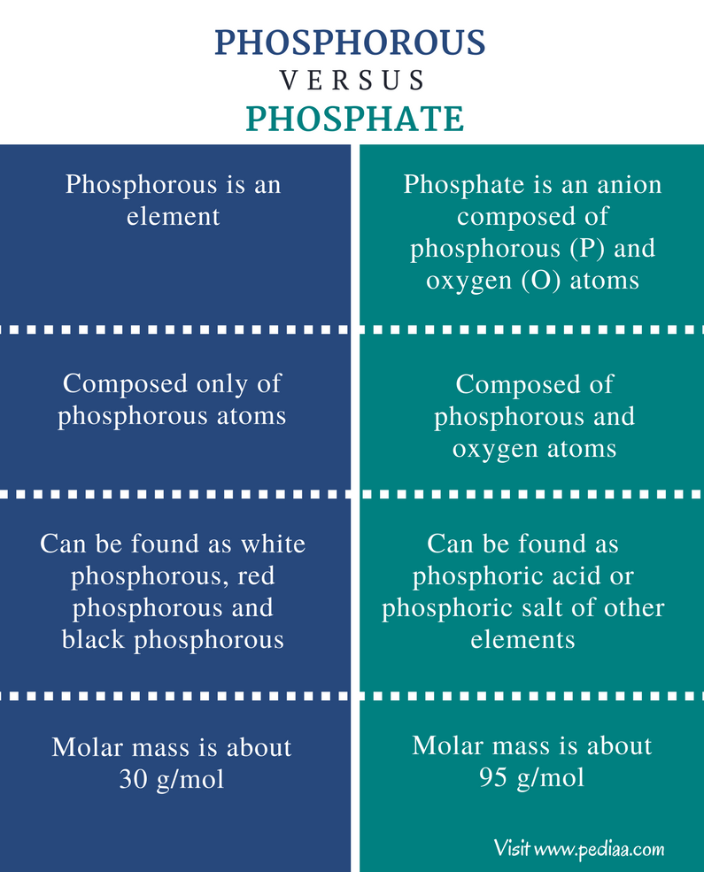 Difference Between Phosphorous and Phosphate - Comparison Summary