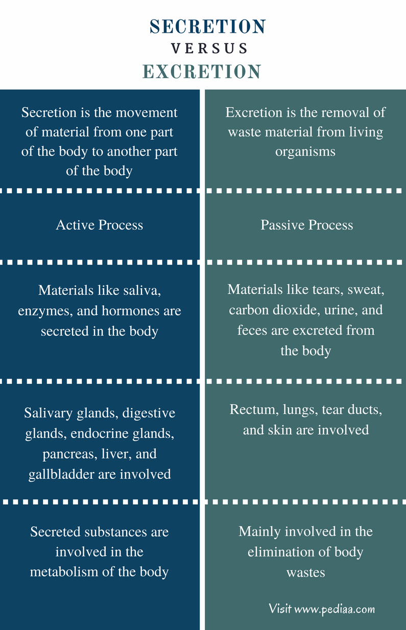 Difference Between Secretion and Excretion - Comparison Summary