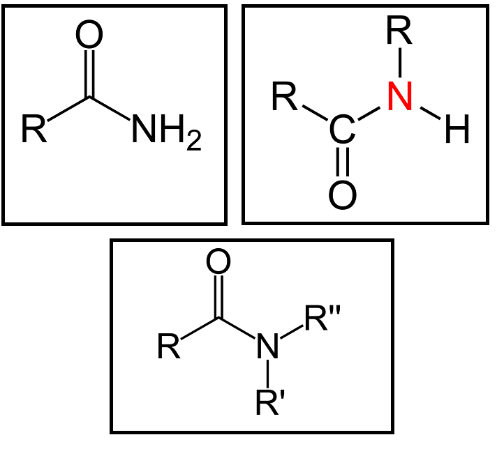 Main Difference - Amine vs Amide
