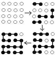 Main Difference -  Chain Growth vs Step Growth Polymerization