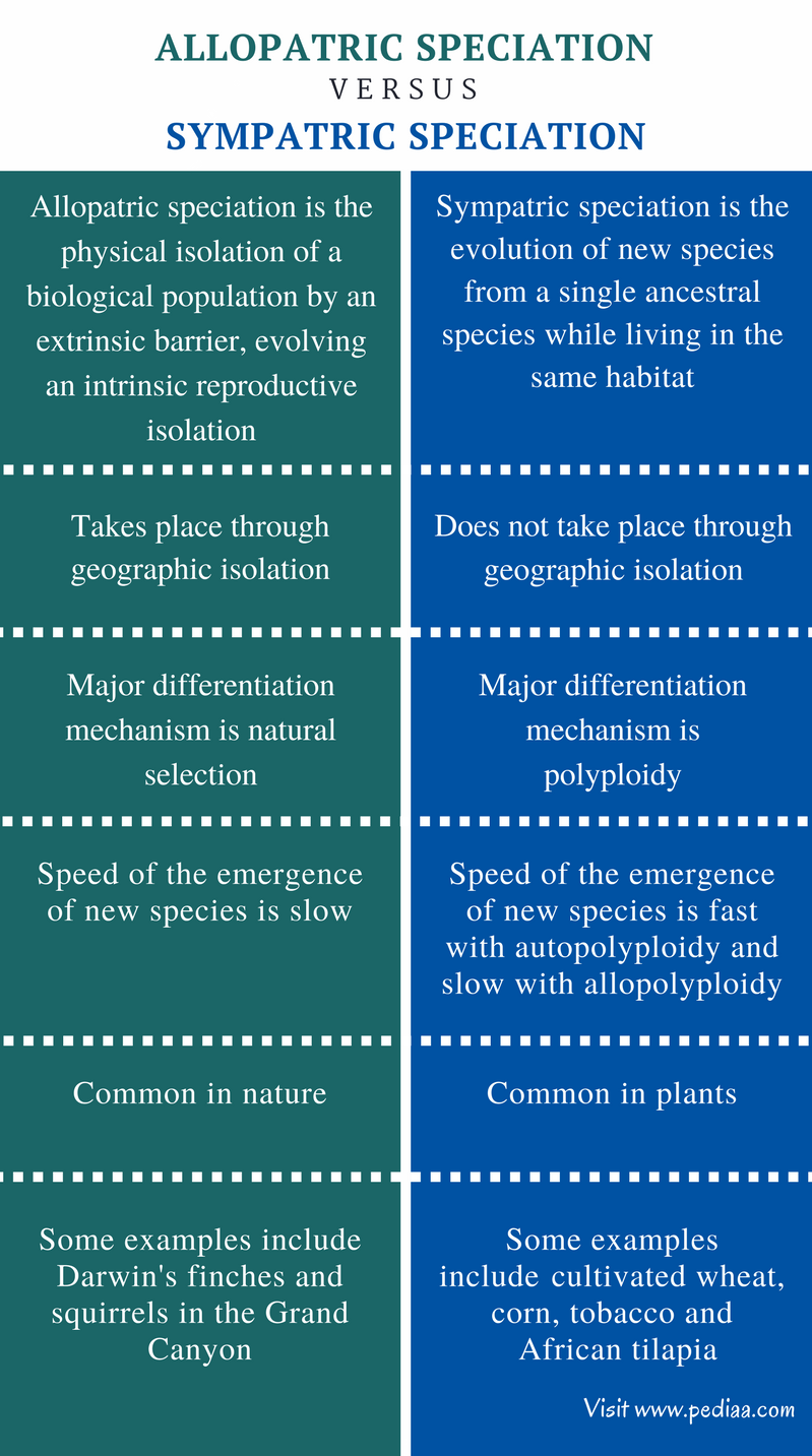 Difference Between Allopatric and Sympatric Speciation - Comparison Summary