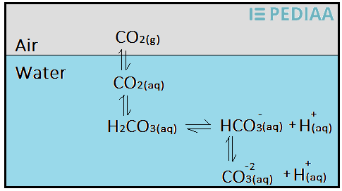 Main Difference - Carbon Dioxide vs Carbon Monoxide