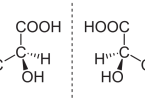 Difference Between Constitutional Isomers and Stereoisomers