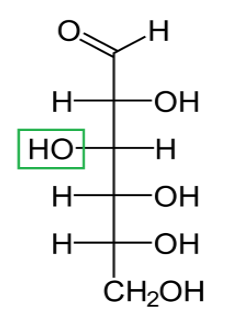 Difference Between D and L Glucose_Figure 4