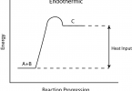 Difference Between Endothermic and Exothermic Reactions