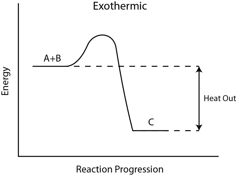 Main Difference - Endothermic vs Exothermic Reactions
