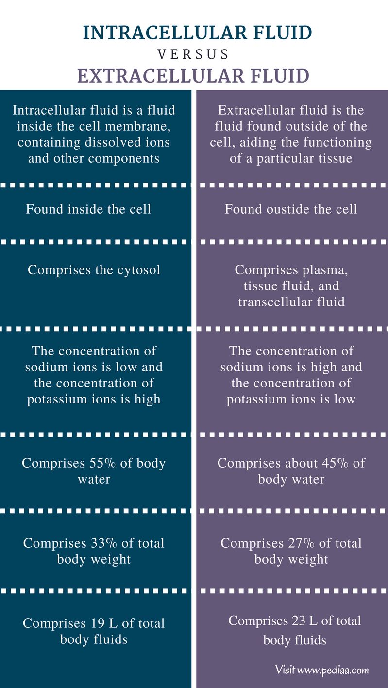 Difference Between Intracellular and Extracellular Fluid - Comparison Summary