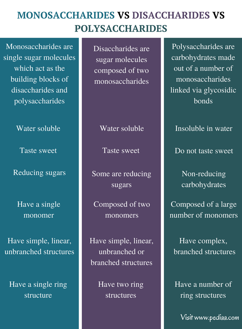 Difference Between Monosaccharides Disaccharides and Polysaccharides - Comparison Summary