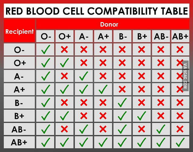 Main Difference - ABO Blood Group vs RH Blood Group