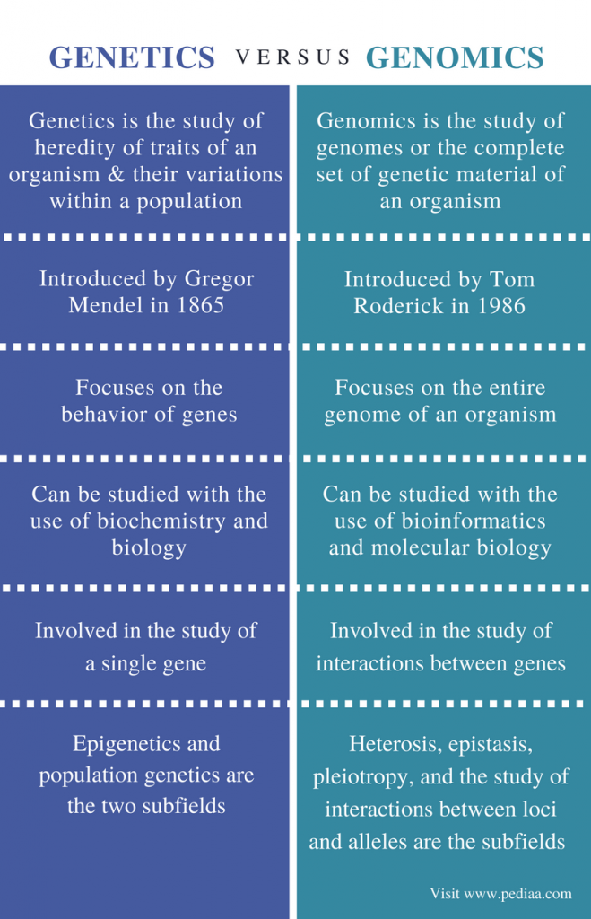 Difference Between Genetics and Genomics - Comparison Summary