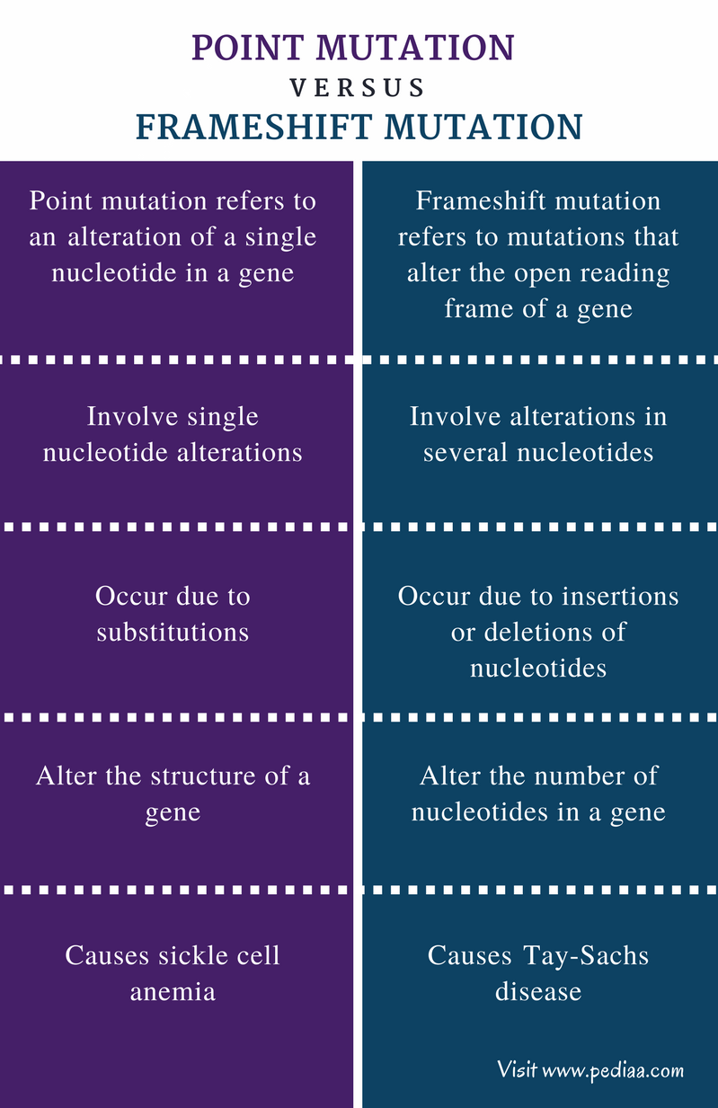 Difference Between Point Mutation and Frameshift Mutation - Comparison Summary