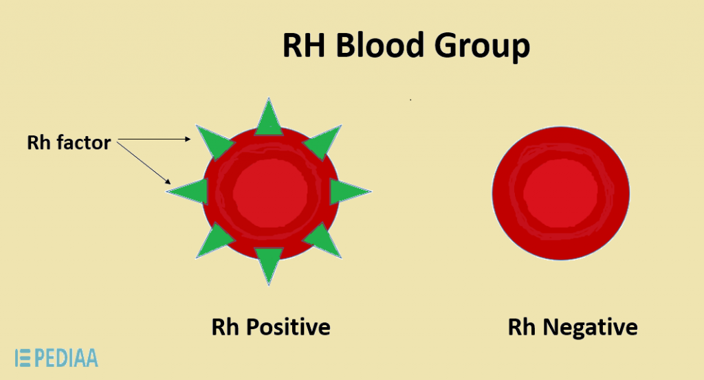 Difference Between Positive and Negative Blood
