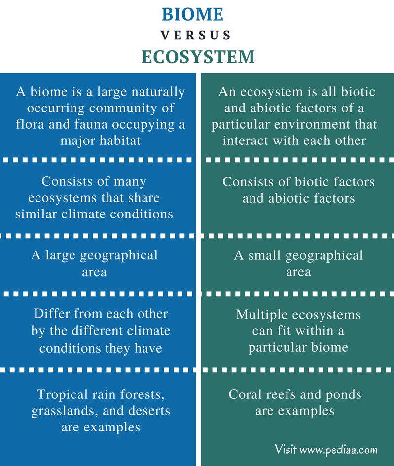 Difference Between Biome And Ecosystem