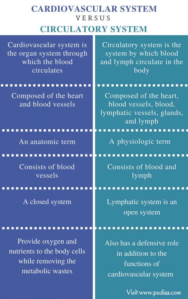 Difference Between Cardiovascular and Circulatory System - Comparison Summary