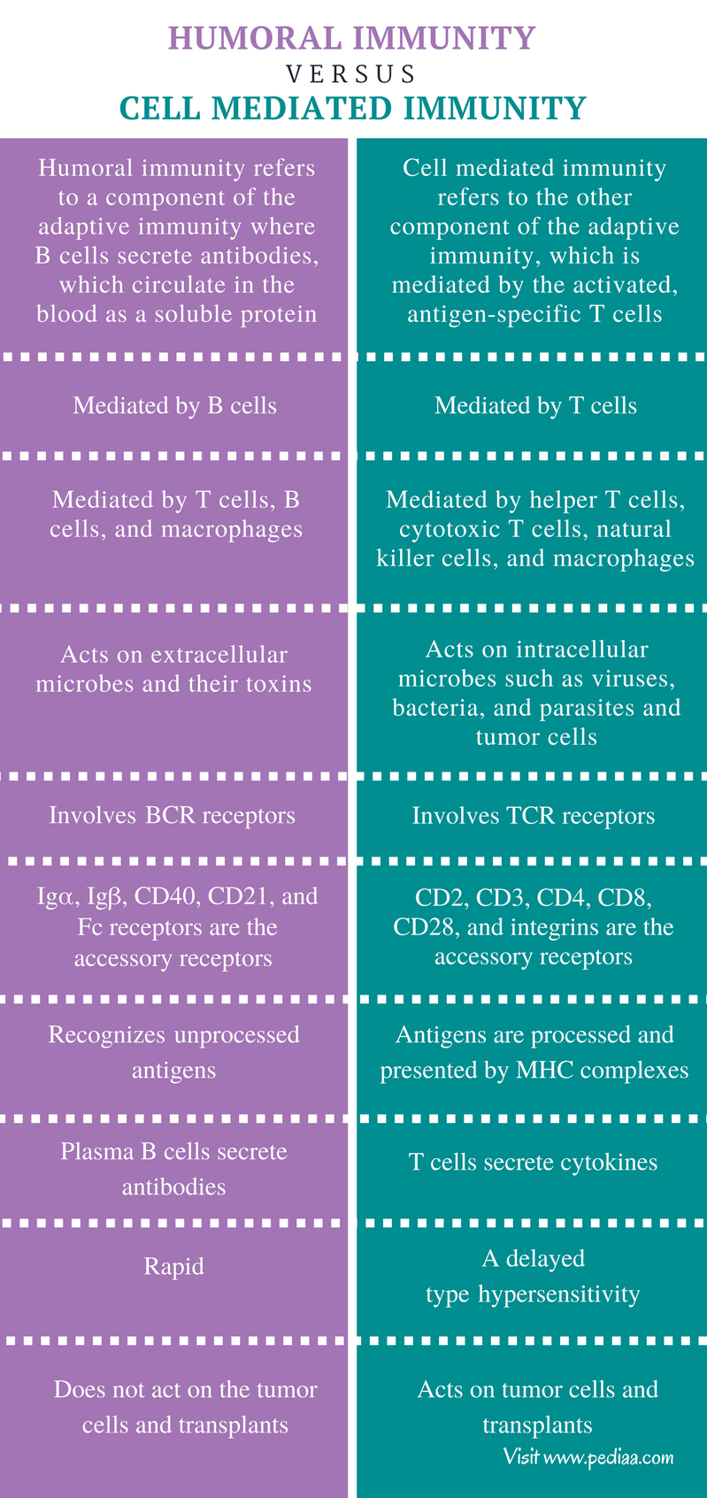 Difference Between Humoral and Cell Mediated Immunity - Comparison Summary