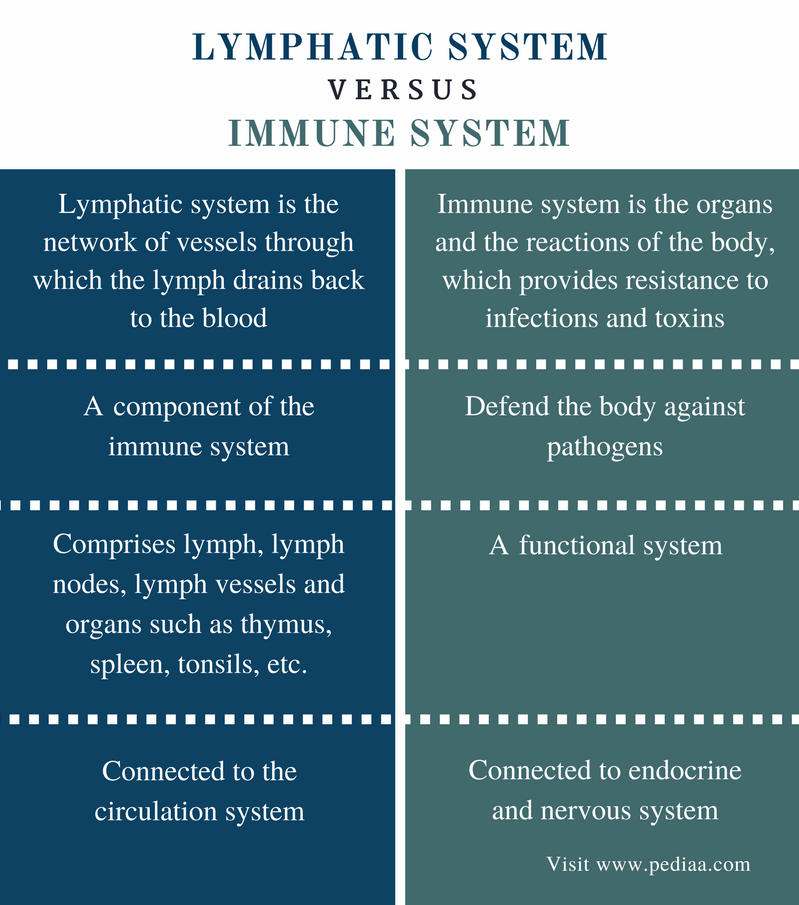 Difference Between Lymphatic and Immune System - Comparison Summary