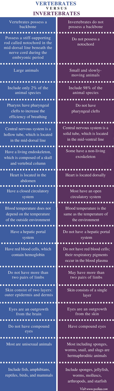 Difference Between Vertebrates and Invertebrates_Comparison Summary