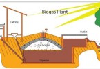 Difference Between Biomass and Biogas