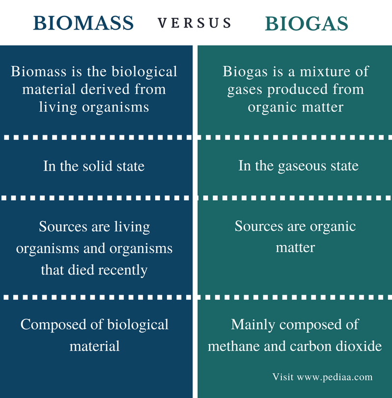 Difference Between Biomass and Biogas - Comparison Summary