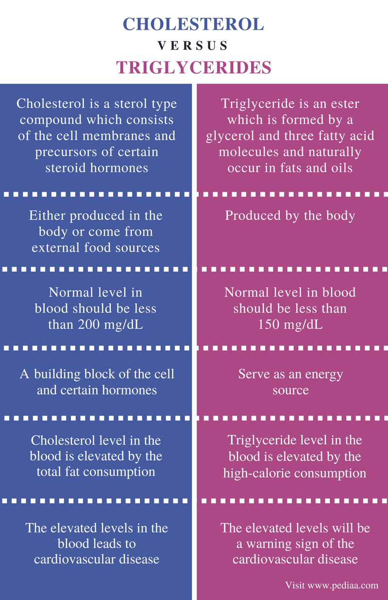 Difference Between Cholesterol and Triglycerides - Comparison Summary