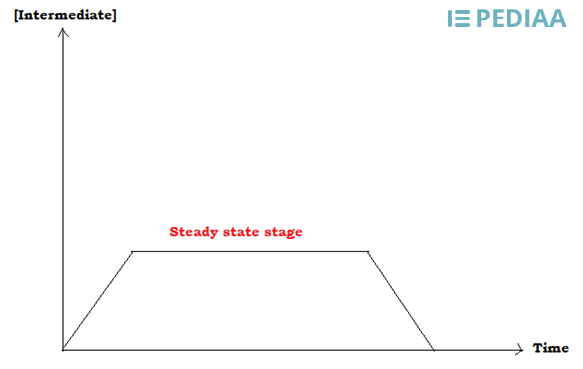 Difference Between Equilibrium and Steady State