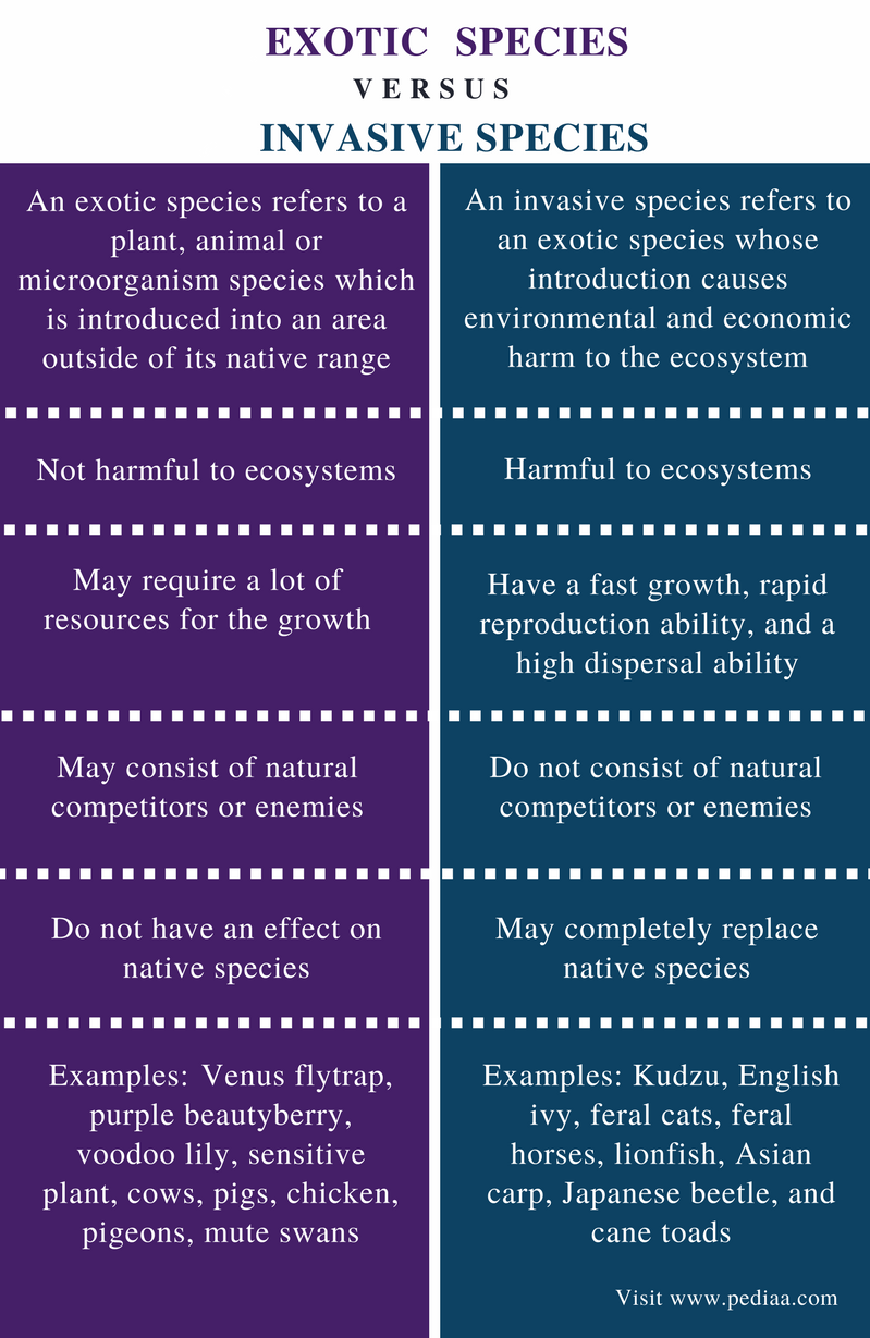 Difference Between Exotic and Invasive Species - Comparison Summary