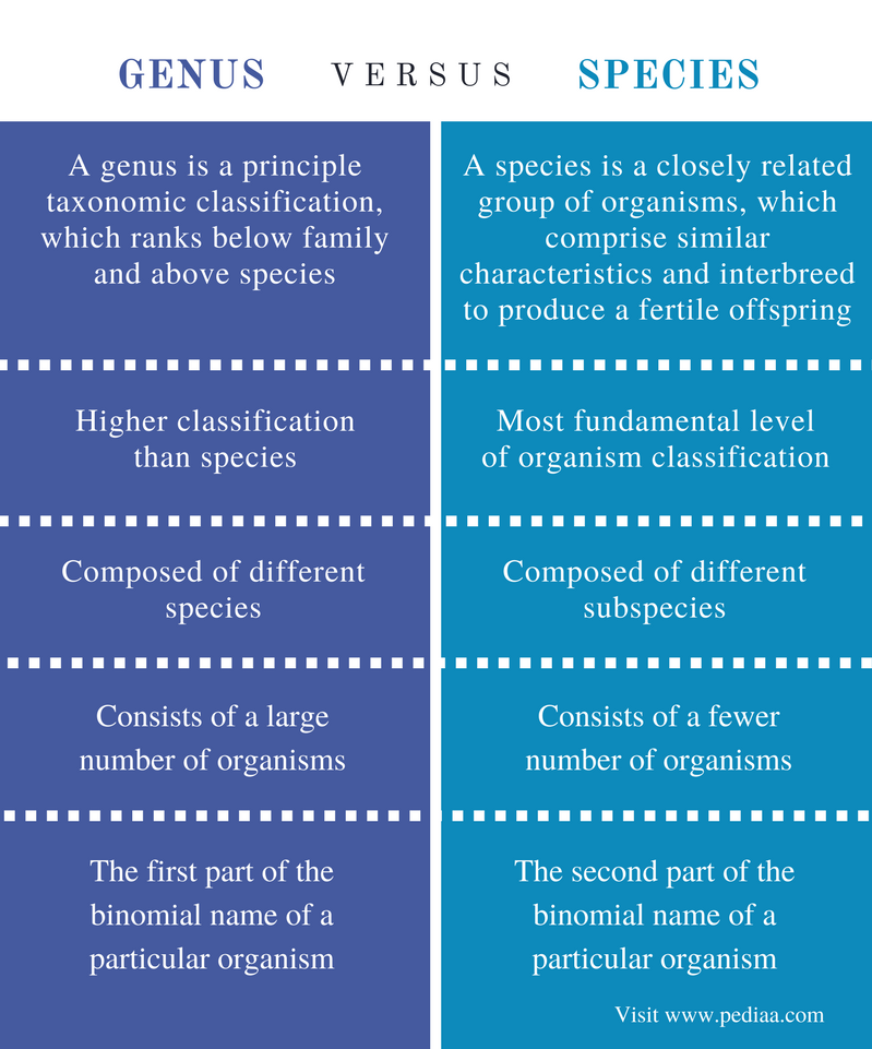 Difference Between Genus and Species - Comparison Summary