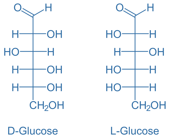 Main Difference - Glucose vs Sucrose