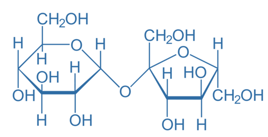 Difference Between Glucose and Sucrose