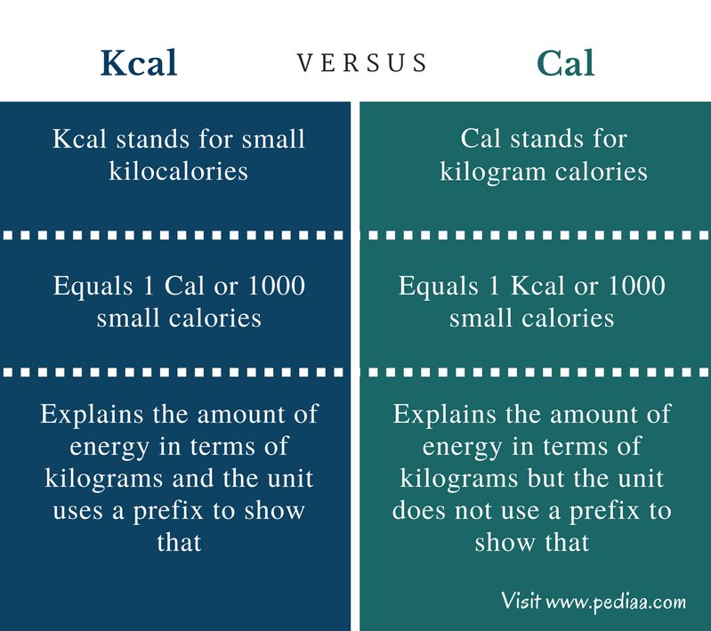 Difference Between Kcal and Cal - Comparison Summary