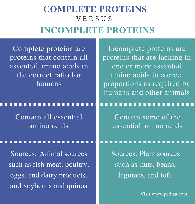 Difference Between Complete and Incomplete Proteins - infographic