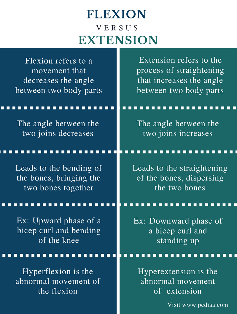 Difference Between Flexion and Extension - Comparison Summary