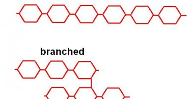 Difference Between Homopolysaccharides and Heteropolysaccharides