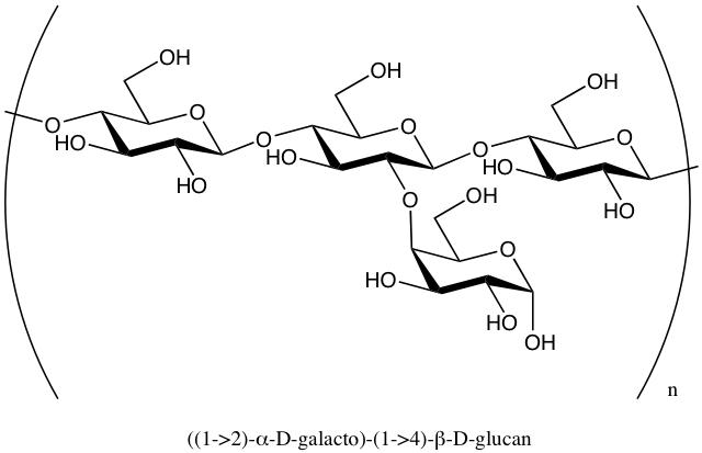 Key Difference - Homopolysaccharides vs Heteropolysaccharides