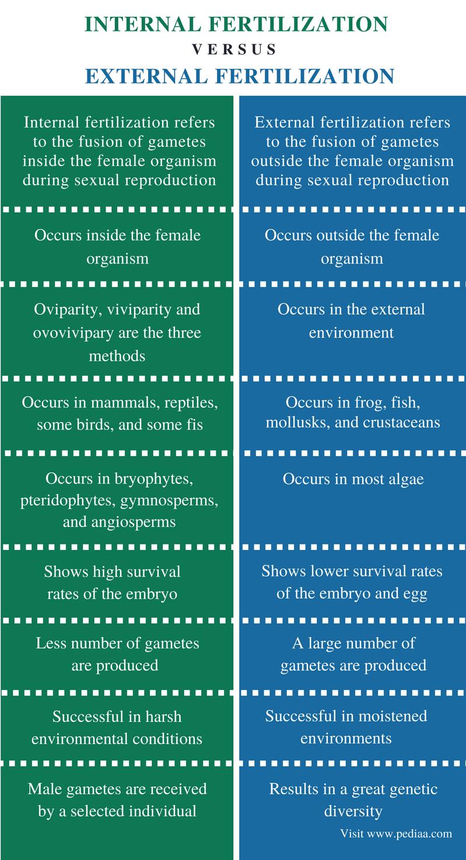 Difference Between Internal and External Fertilization - Comparison Summary
