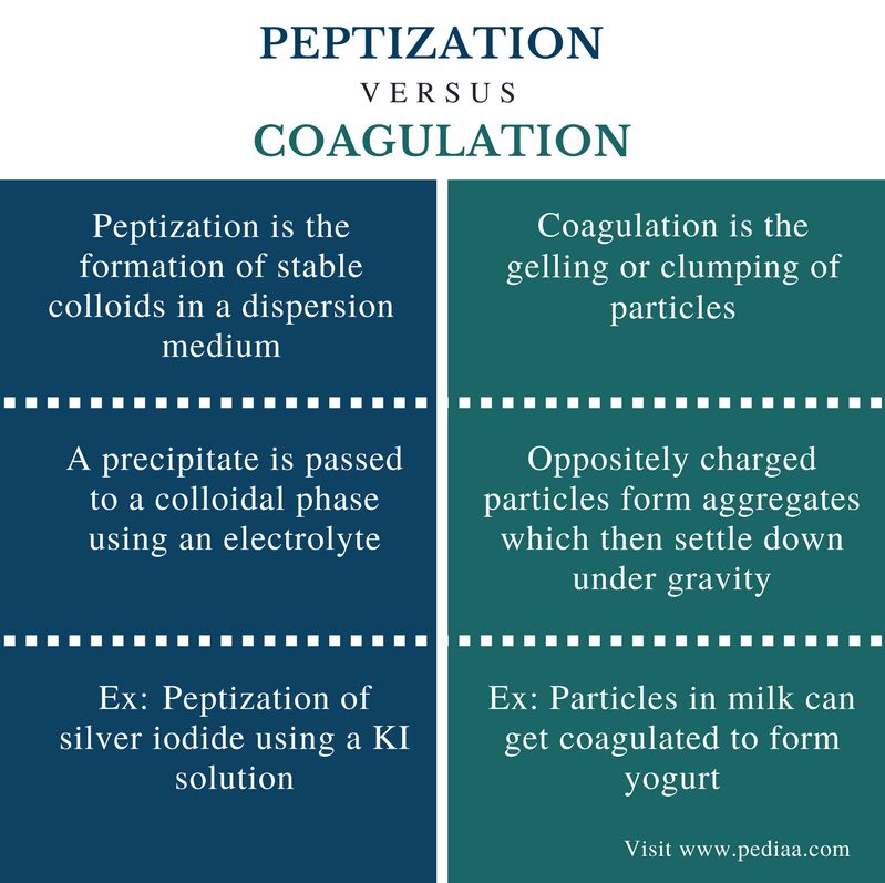 Difference Between Peptization and Coagulation - Comparison Summary
