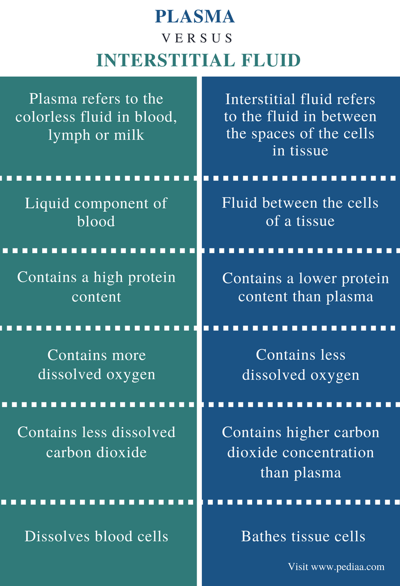 Difference Between Plasma and Interstitial Fluid - Comparison Summary