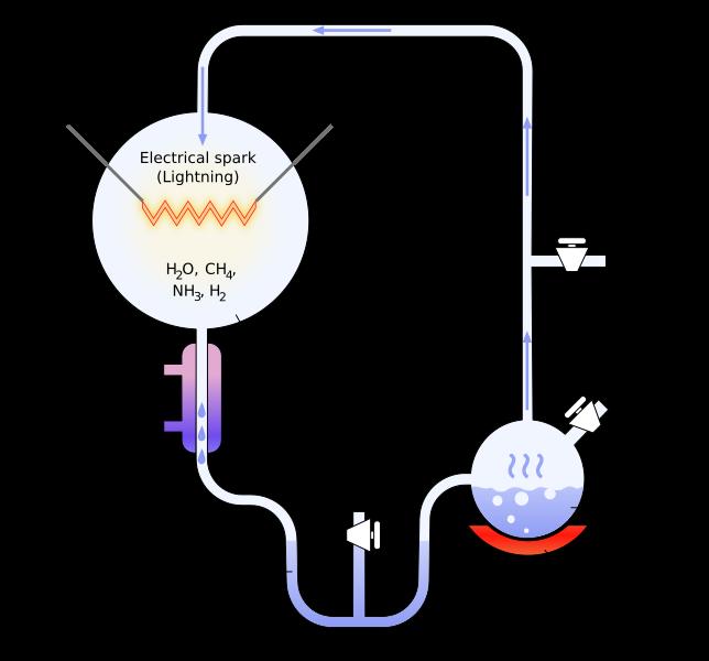 Difference Between Abiogenesis and Biogenesis