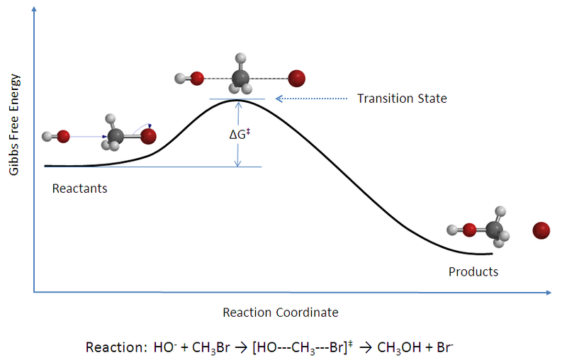 Difference Between Activated Complex and Transition State