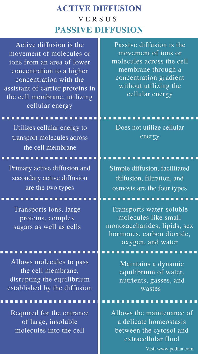 Difference Between Active and Passive Diffusion - Comparison Summary