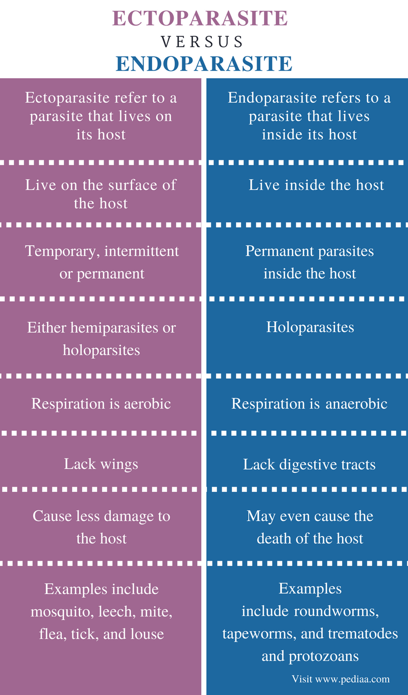 Difference Between Ectoparasite and Endoparasite - Comparison Summary