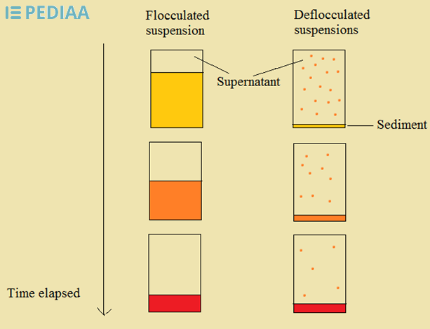 Difference Between Flocculated and Deflocculated Suspension_Figure 1