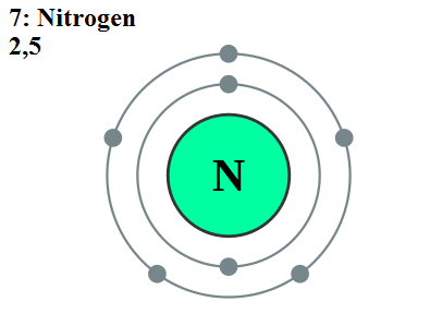 Main Difference - Nitrogen vs Nitrate